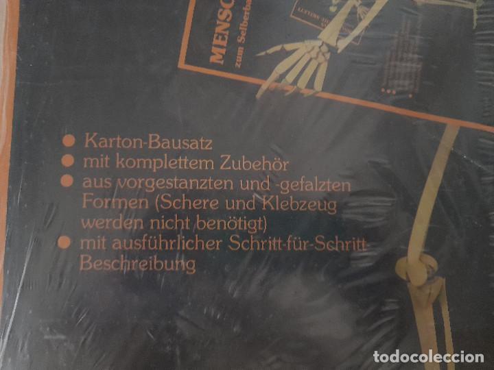 Maquetas: Maqueta Anatomía El esqueleto humano completo tamaño natural sin estrenar cartón Alemania TACO - Foto 7 - 269204968