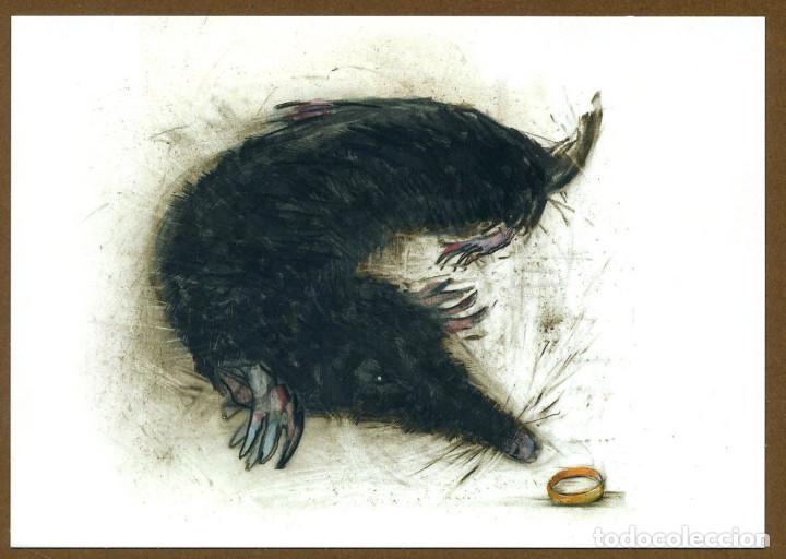 Coleccionismo Marcapáginas: 8 Marcapáginas POSTAL SALAMANDRA ANIMALES FANTASTICOS - Foto 5 - 132336759