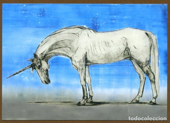 Coleccionismo Marcapáginas: 8 Marcapáginas POSTAL SALAMANDRA ANIMALES FANTASTICOS - Foto 8 - 132336759