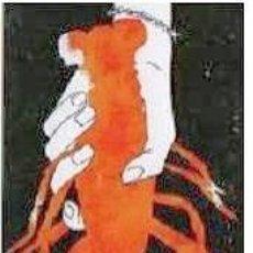 Coleccionismo Marcapáginas: MARCAPAGINAS EDITORIAL SALAMANDRA LA CENA Nº 177. Lote 143645222