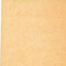Coleccionismo Marcapáginas: MARCAPAGINAS SALAMANDRA Nº 5, EL ULTIMO ENCUENTRO, DE SANDOR MARAI.. Lote 177255574