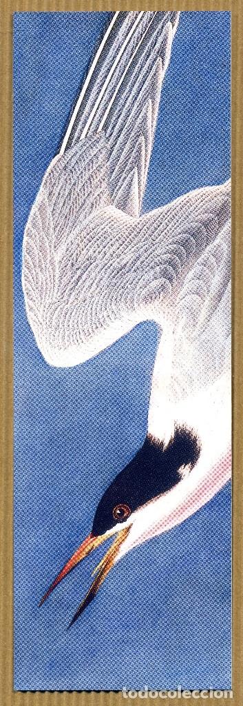 MARCAPÁGINAS – EDITORIAL. SALAMANDRA Nº 348 (Coleccionismo - Marcapáginas)