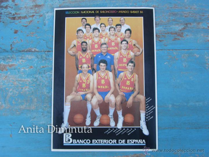 ANTIGUA Y GENIAL PEGATINA DEL MUNDO BASKET DE 1986 - SELECCION NACIONAL BALONCESTO - BANCO EXTERIOR (Coleccionismo Deportivo - Merchandising y Mascotas - Otros deportes)