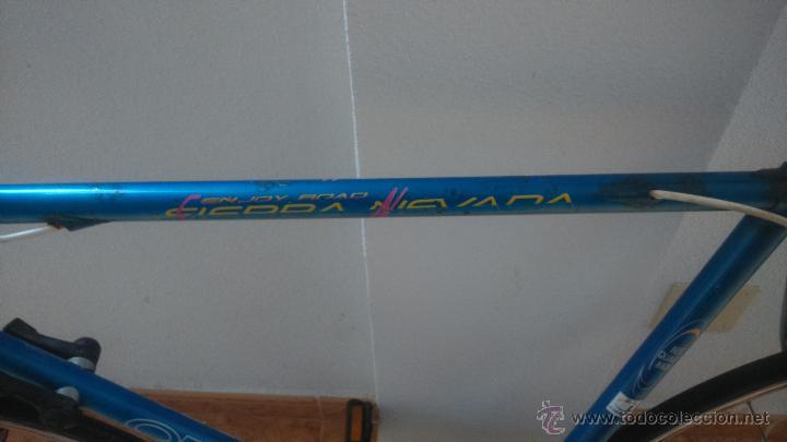 Coleccionismo deportivo: Bicicleta carreras Orbea sierra nevada año 89 - Foto 3 - 39523729