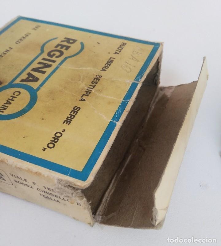 Coleccionismo deportivo: Piñón cassette Regina Extra Oro 6 velocidades 13-23. Con caja. Recambio bicicleta clásica - Foto 8 - 179139383