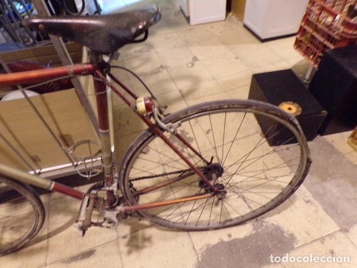 Coleccionismo deportivo: bicicleta carretera con foco y sillin nervi sin porta bidon foto - Foto 3 - 182175941