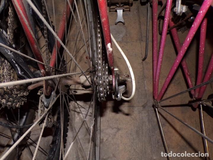 Coleccionismo deportivo: bicicleta carretera con foco y sillin nervi sin porta bidon foto - Foto 9 - 182175941