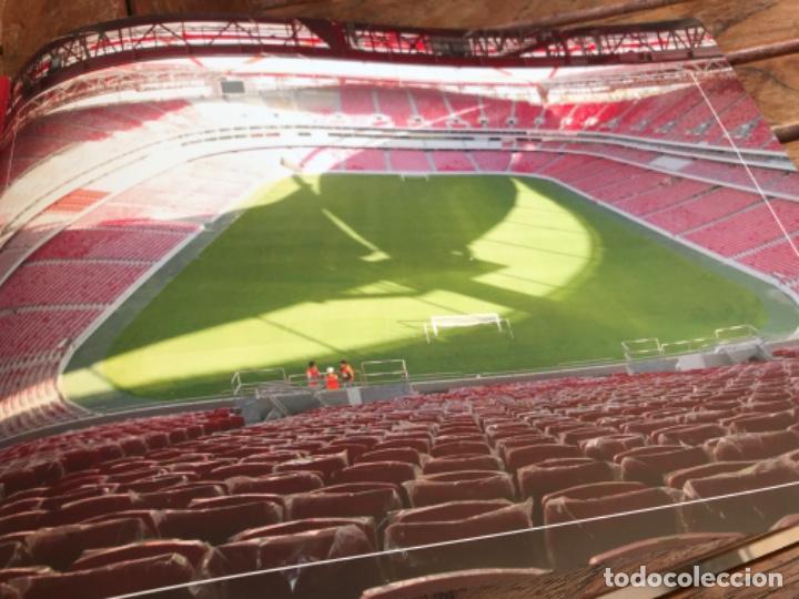 Coleccionismo deportivo: Presentación Benfica Estadio da Luz. A nova Catedral. Fútbol - Foto 27 - 237799020