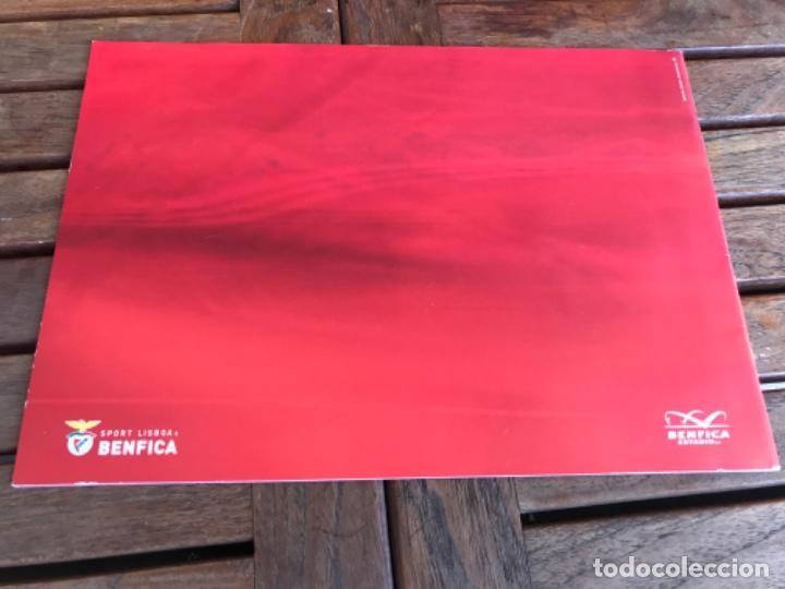 Coleccionismo deportivo: Presentación Benfica Estadio da Luz. A nova Catedral. Fútbol - Foto 28 - 237799020