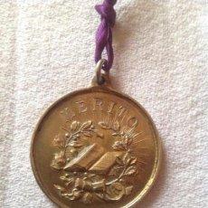 Medallas condecorativas: ANTIGUA MEDALLA MÉRITO PREMIO APLICACIÓN. Lote 110412503