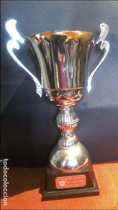 TROFEO COPA AVIACION FAC 1999 47X28 (Coleccionismo Deportivo - Medallas, Monedas y Trofeos - Otros deportes)