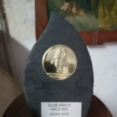 Coleccionismo deportivo: CLUB HÍPICO ARCO IRIS TROFEO SALTO 2020 EN PIZARRA ALICANTE. Lote 253868210