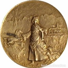 Medallas históricas: ESPAÑA. MEDALLA DEL INSTITUTO AGRÍCOLA CATALÁN DE SAN ISIDRO. 1902. PLATA. Lote 103778611