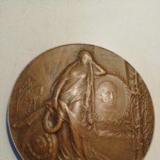 Medallas históricas: BARTOLOME MITRE 1821_1906 MEDALLA HOMENAJE. Lote 158113100