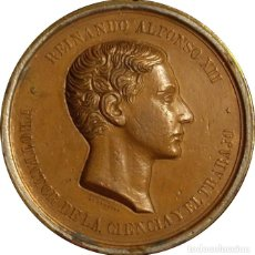Medallas históricas: ESPAÑA. MEDALLA ÉPOCA DE ALFONSO XII. Lote 168332436