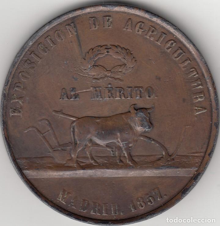 Medallas históricas: MEDALLA: 1857 ISABELL II. EXPOSICION DE AGRICULTURA - MADRID - AL MERITO - Foto 2 - 219859241