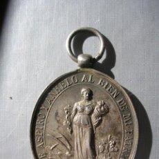 Medallas históricas: MEDALLA, SOCIEDAD TUDELANA DE AMIGOS DEL PAIS, TUDELA NAVARRA. Lote 235722475