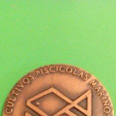 Medallas temáticas: MEDALLA SAN FERNANDO, CADIZ, 1984. Lote 57036568