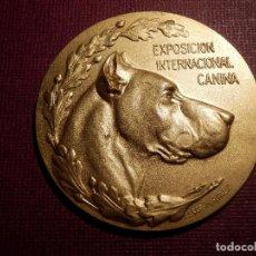Medallas temáticas: MEDALLA - EXPOSICIÓN INTERNACIONAL CANINA - AÑO 1921 - REAL SOCIEDAD CENTRAL DE FOMENTO DE LAS RAZAS. Lote 74654119