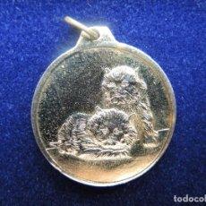 Medallas temáticas: MEDALLA ANIMAL GATOS, DÉCADA 1960-1970. Lote 117956651
