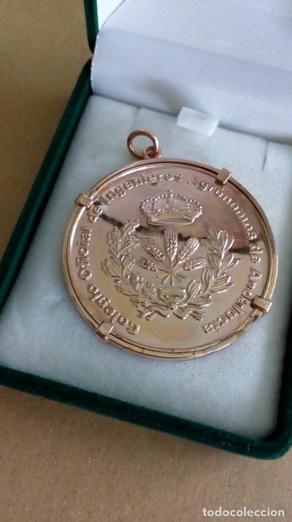 MEDALLA DE COLEGIO OFICIAL DE INGENIEROS AGRÓNOMOS DE ANDALUCÍA (Numismática - Medallería - Temática)
