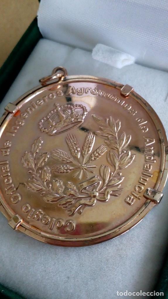Medallas temáticas: Medalla de Colegio Oficial de Ingenieros Agrónomos de Andalucía - Foto 4 - 118753967