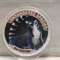 Medallas temáticas: MONEDA PLATA CONMEMORATIVA ANIMALES EN PELIGRO DE EXTINCION - RING TAILED LEMUR 100$. Lote 121984867