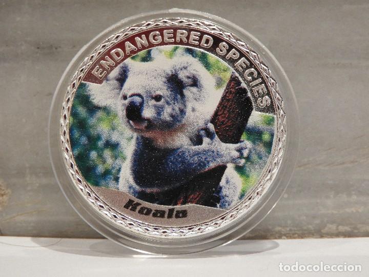 MONEDA PLATA CONMEMORATIVA ANIMALES EN PELIGRO DE EXTINCION - KOALA 100$ (Numismática - Medallería - Temática)
