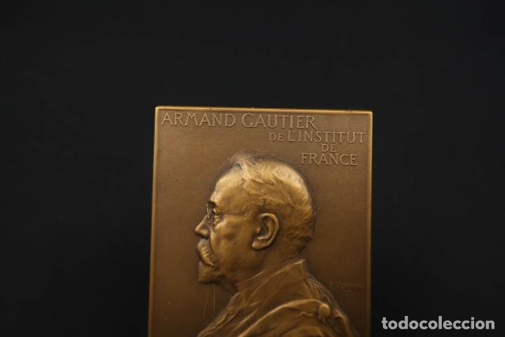 Medallas temáticas: Antigua Medalla de Bronce Armand Gautier Francia Año 1911 - Foto 2 - 189436471