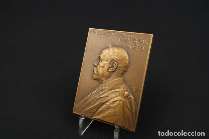 Medallas temáticas: Antigua Medalla de Bronce Armand Gautier Francia Año 1911 - Foto 4 - 189436471