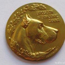 Medallas temáticas: MEDALLLA PREMIO CANINO , ESPAÑA . 40,80 GRAMOS/49 MM. Lote 194370630