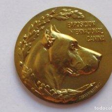 Medallas temáticas: MEDALLLA PREMIO CANINO , ESPAÑA . 41,90 GRAMOS/49,5 MM. Lote 194372116