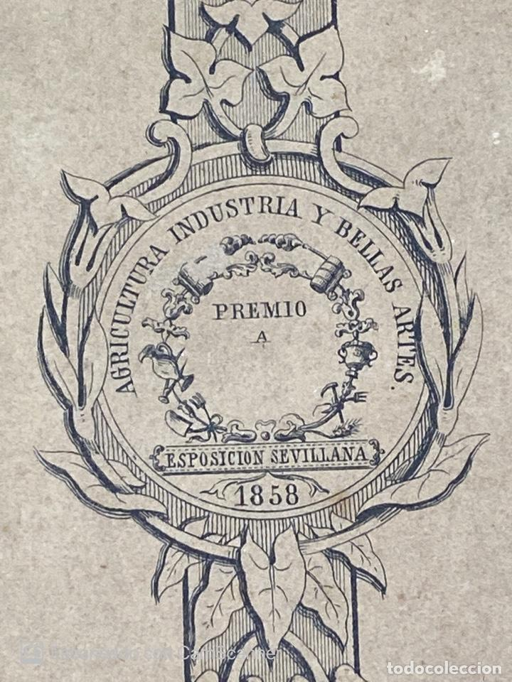 Medallas temáticas: EXPOSICION PUBLICA SEVILLANA. SEVILLA, 1858. MEDALLA DE PLATA. D. MANUEL GROSSO. VER FOTOS - Foto 12 - 210193615