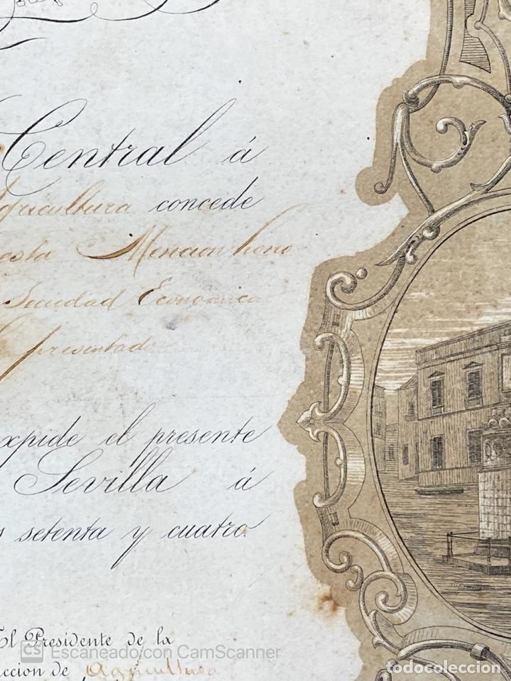 Medallas temáticas: EXPOSICION BÉTICO EXTREMEÑA. MEDALLA A D. MANUEL GROSSO. SEVILLA, 1874. VER FOTOS - Foto 10 - 210196035