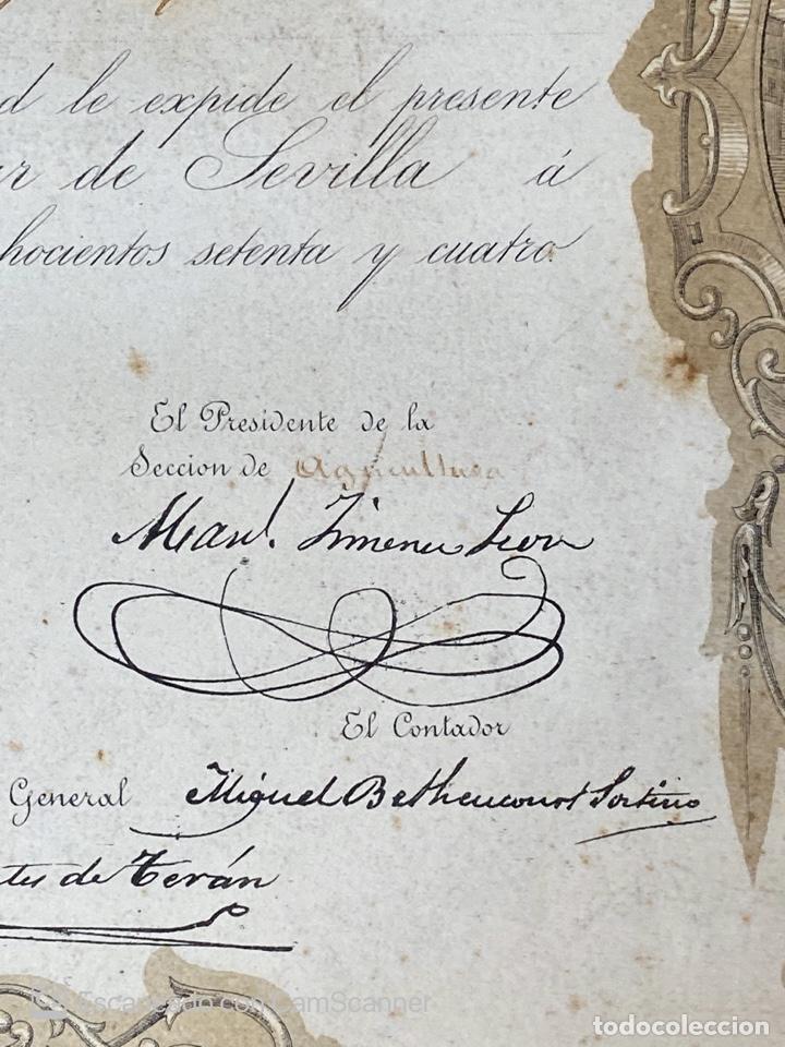 Medallas temáticas: EXPOSICION BÉTICO EXTREMEÑA. MEDALLA A D. MANUEL GROSSO. SEVILLA, 1874. VER FOTOS - Foto 13 - 210196035