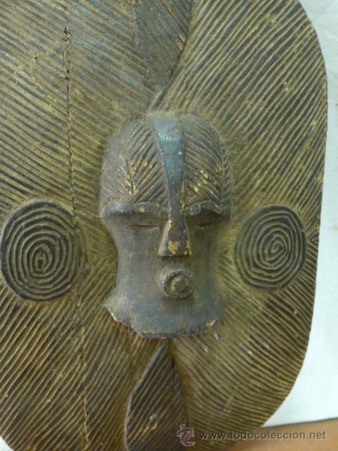 Militaria: Antiguo y original escudo de tribu africana, de madera tallada - Foto 3 - 44048239