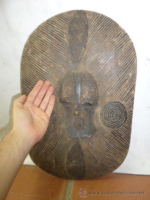 Militaria: Antiguo y original escudo de tribu africana, de madera tallada - Foto 4 - 44048239