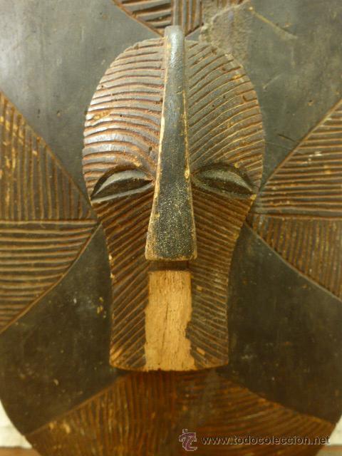 Militaria: Antiguo y original escudo de tribu africana, de madera tallada, africa - Foto 3 - 45110167