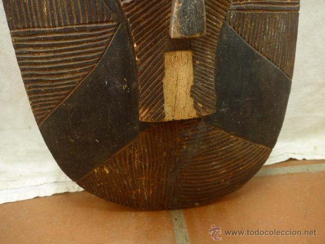Militaria: Antiguo y original escudo de tribu africana, de madera tallada, africa - Foto 5 - 45110167