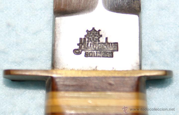 Militaria: (Cuchillo-Navaja) Cuchillo, Daga Hubertus años 60 - Foto 2 - 31191088