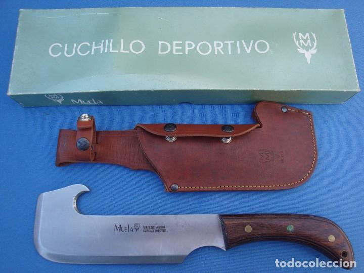 CUCHILLO DE CAZA MUELA MODELO HACHETA -DESCATALOGADO. (Militar - Armas Blancas Originales de Fabricación Posterior a 1945)