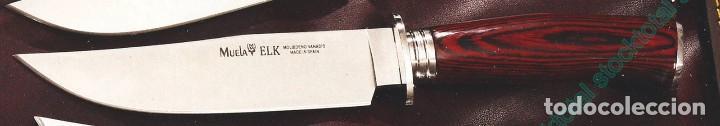 CUCHILLO MUELA ELK-14R.I HOJA 14 CM (Militar - Armas Blancas Originales de Fabricación Posterior a 1945)