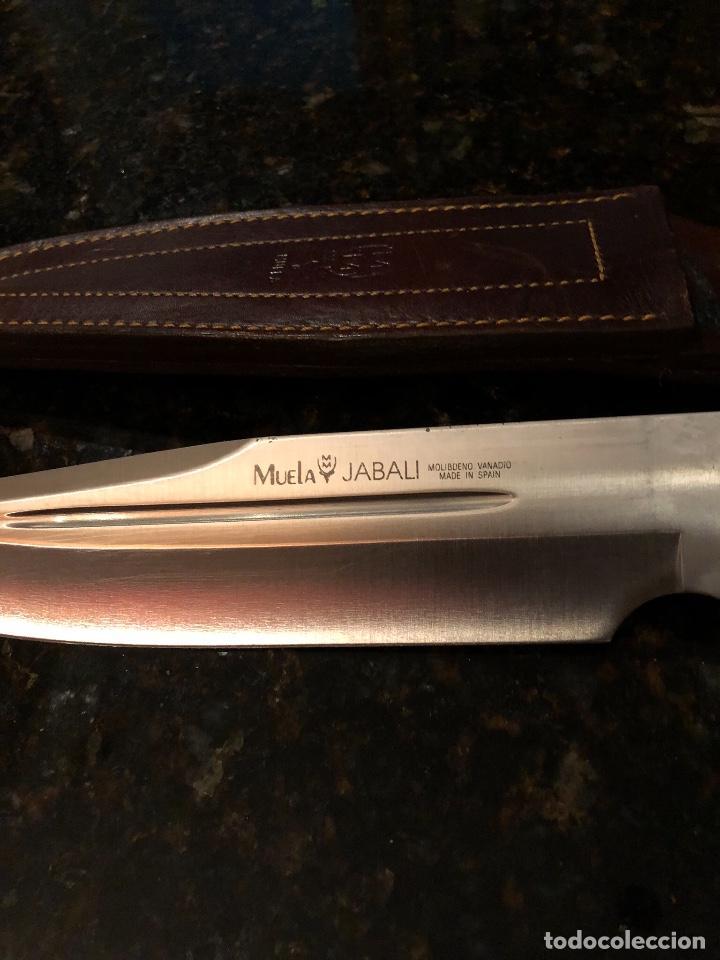 Militaria: Cuchillo Muela - Foto 2 - 131897770