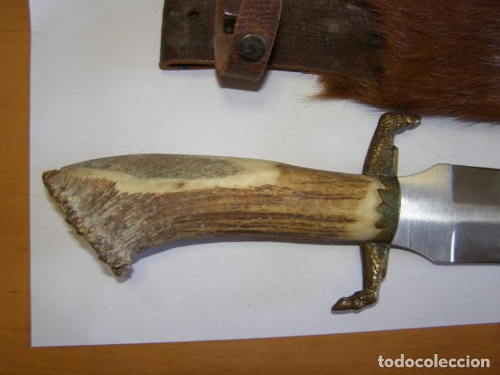 Militaria: Cuchillo de caza tipo bowie, marca MUELA REHALERO. - Foto 6 - 168704084