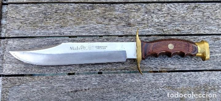 Militaria: Cuchillo Bowie Muela - Foto 2 - 177860135
