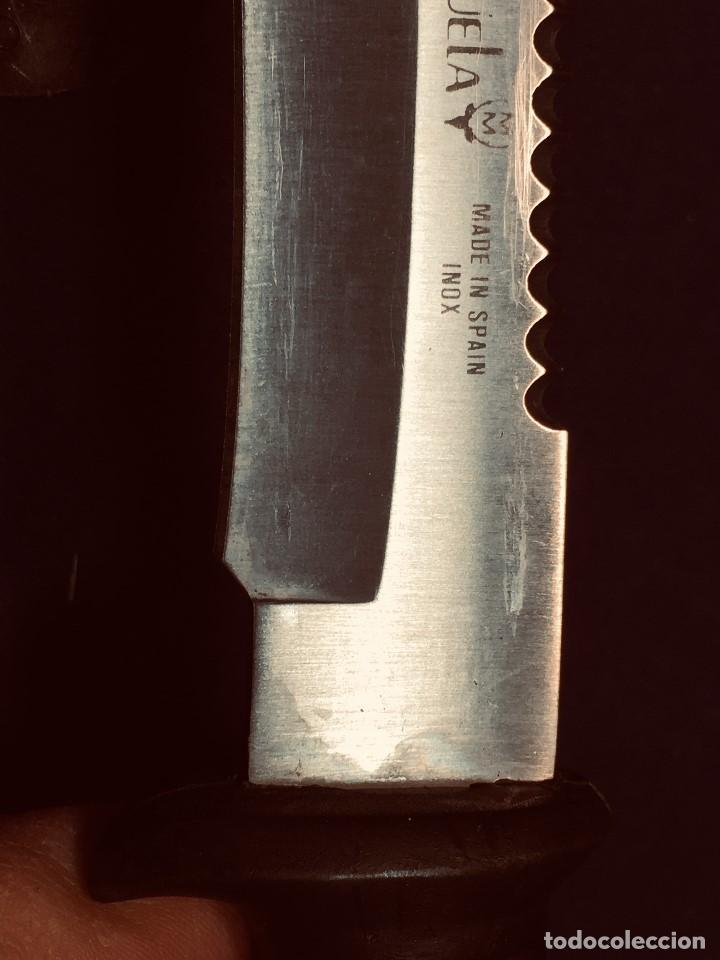 Militaria: puñal muela phillip bronkhorst SAFARIS FUNDA PLASTICO NEGRO TIPO SUBMARINISMO MUY POCO USO 30X5CMS - Foto 7 - 191134125