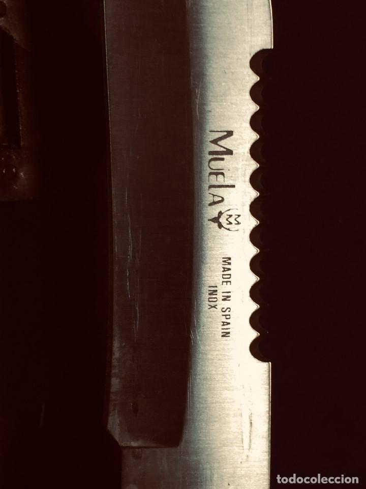 Militaria: puñal muela phillip bronkhorst SAFARIS FUNDA PLASTICO NEGRO TIPO SUBMARINISMO MUY POCO USO 30X5CMS - Foto 9 - 191134125