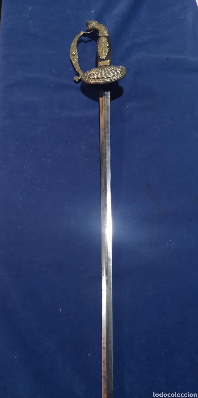 Militaria: Espada de ceñir de gran gala española primer imperio napoleónico - Foto 14 - 212207231
