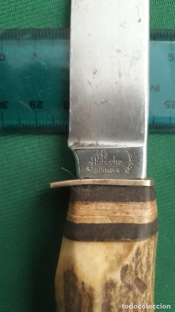 Militaria: Cuchillo de caza - Foto 6 - 238671360