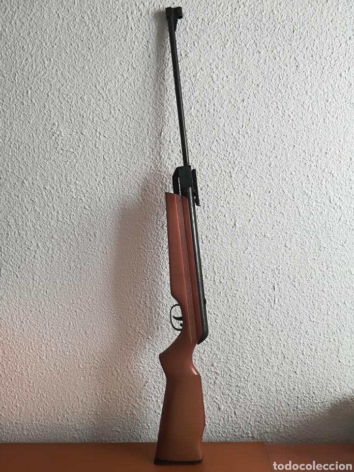 Militaria: Escopeta carabina aire comprimido Gamo 900 - años 80 caza vintage tiro perdigones - Caja original - Foto 2 - 119052499